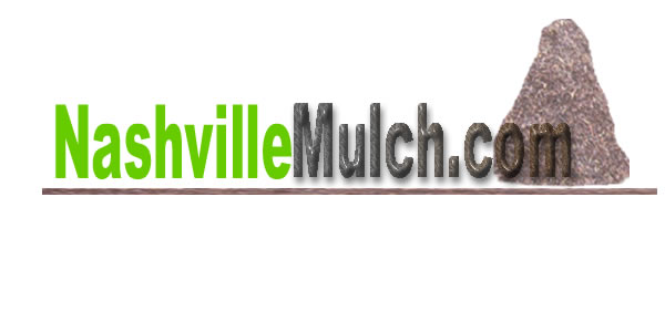 Articles about Mulch.