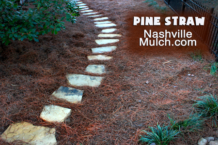 Pine Straw Bails for Mulching Choice